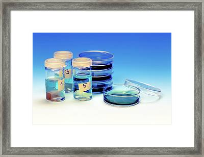 Petri Dishes And Vials Framed Print