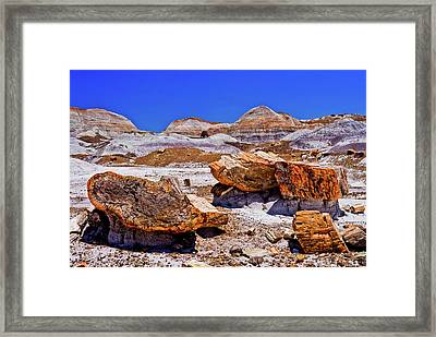 Framed Print featuring the photograph Petrified Forest - Painted Desert by Bob and Nadine Johnston