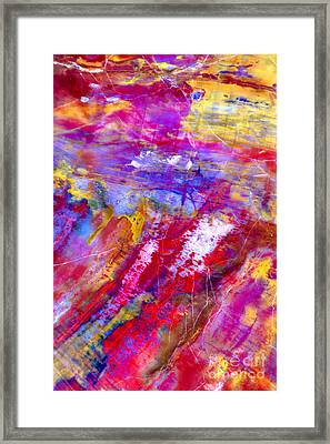 Petrified Wood - Color Of The Painted Desert Framed Print