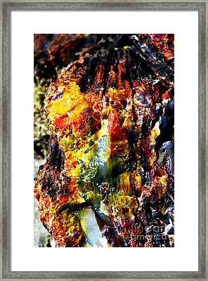 Petrified Wood Macro At Petrified Forest National Park Vivid Color Framed Print