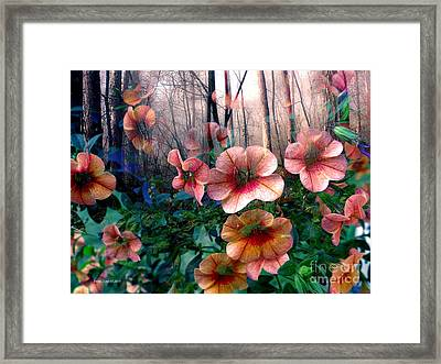 Petunias In The Forest Framed Print