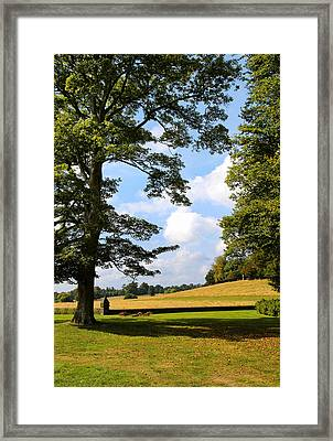 Framed Print featuring the photograph Petworth Gardens By Mike-hope by Michael Hope