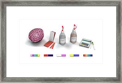Ph Indicators Framed Print by Mikkel Juul Jensen
