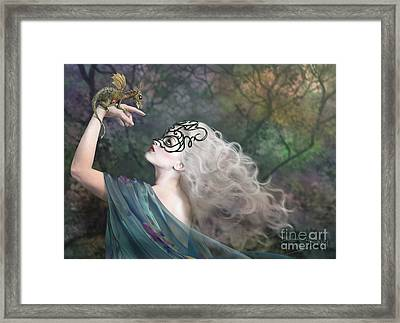 Phantom Framed Print by Drazenka Kimpel