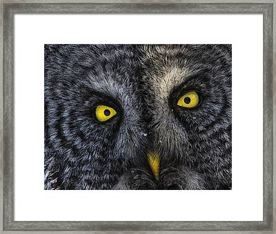Phantom Of The North 2 Framed Print by Gary Hall
