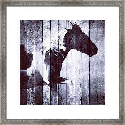 Phantom Stallion Framed Print by Patricia Januszkiewicz