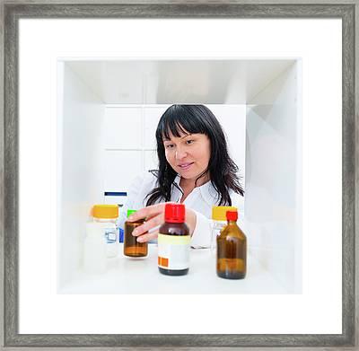Pharmacist Taking A Bottle From A Shelf Framed Print