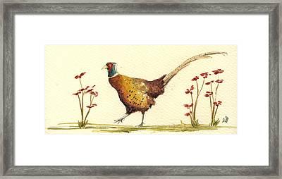 Pheasant In The Flowers Framed Print