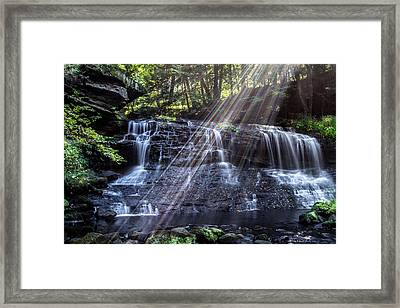 Phenomenon Framed Print