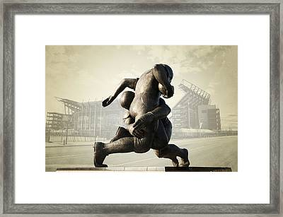 Philadelphia Eagles Framed Print by Bill Cannon