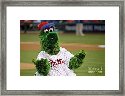 Phillies Phanatic Why Not Framed Print by Bryan Maransky