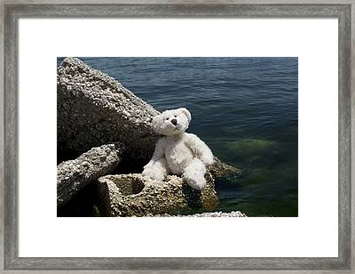 Philosopher Framed Print by William Patrick