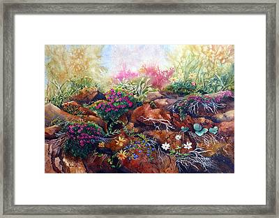 Phlox On The Rocks Framed Print by Karen Mattson