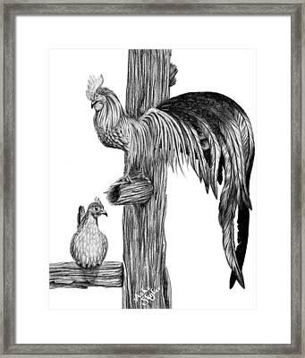 Phoenix Chicken Framed Print by Ashe Skyler
