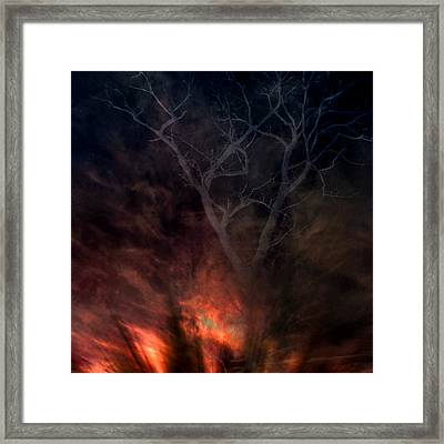 Phoenix One Framed Print