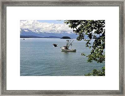 Photo Bomb Framed Print
