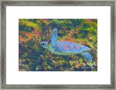 Photo Painting Of Sea Turtle Framed Print by Dan Friend