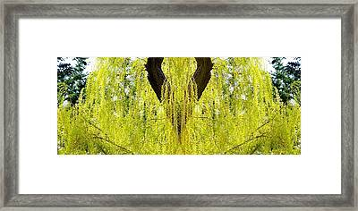 Photo Synthesis 5 Framed Print by Will Borden
