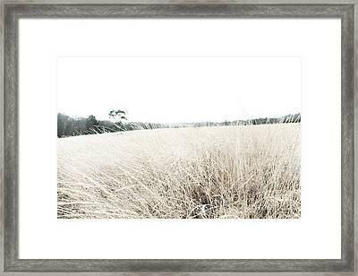 Photographic Sketch Of A Winter Landscape Framed Print by Natalie Kinnear