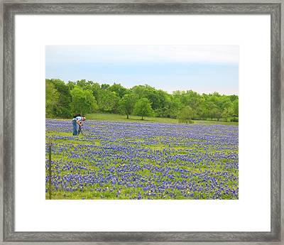Framed Print featuring the photograph Photographing Texas Bluebonnets by Connie Fox