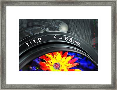 Photography Framed Print by Gunter Nezhoda
