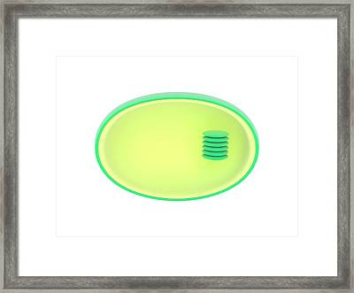 Photosynthesis Metabolism Framed Print by Science Photo Library