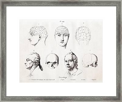 Phrenology Of Famous Heads Framed Print by Paul D Stewart