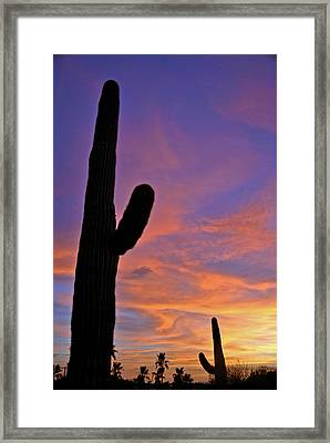 Phx July 2014 Sunsets 3 Framed Print