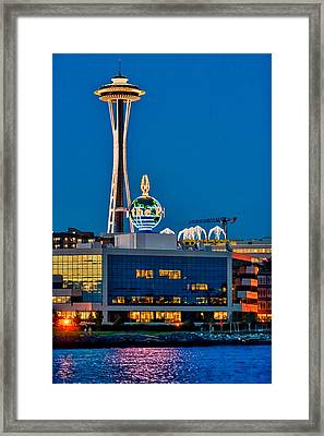 Pi And The Needle Framed Print