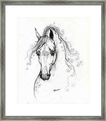 Piaff Polish Arabian Horse Drawing Framed Print by Angel  Tarantella