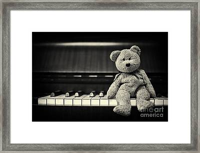 Piano Bear Framed Print