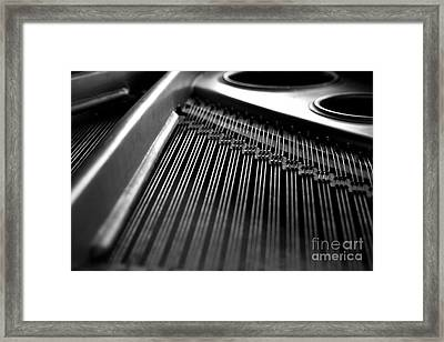 Piano Strings Framed Print by Tim Hester
