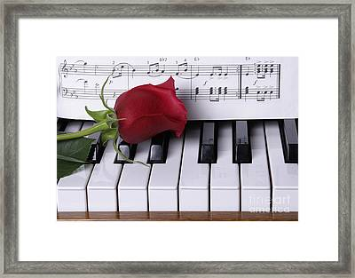 Piano With Red Rose Framed Print