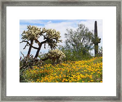 Picacho Peak Wild Flowers Framed Print