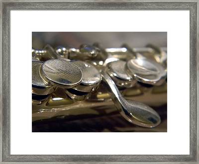 Piccolo Framed Print by Kelly Howe