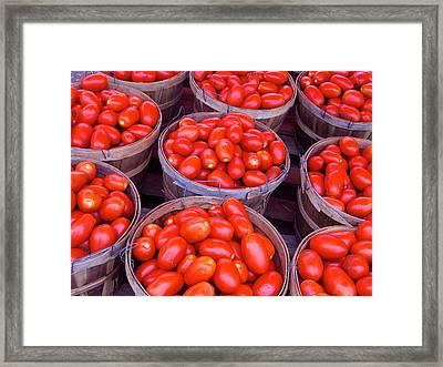 Pick A Peck Framed Print by Rhonda Leonard