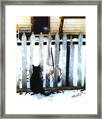 Picket Fence Love Framed Print by Elia Peters