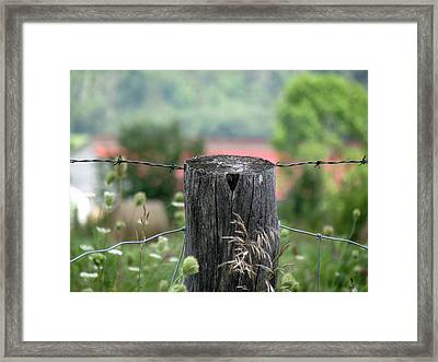 Framed Print featuring the photograph Picket Fence Wild Flowers by France Laliberte