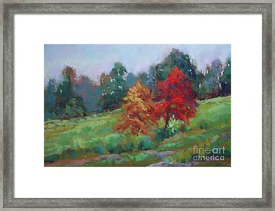 Picketts Mill Walk Framed Print by Virginia Dauth