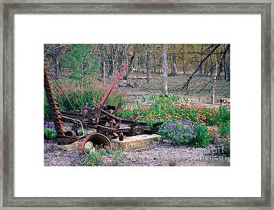 Pickle Creek Ranch Botanical Garden Framed Print