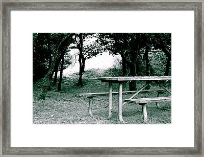 Picnic Blues  Framed Print by Sheldon Blackwell
