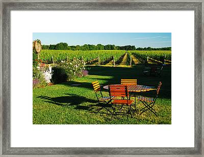 Picnic In The Vineyard Framed Print by James Kirkikis