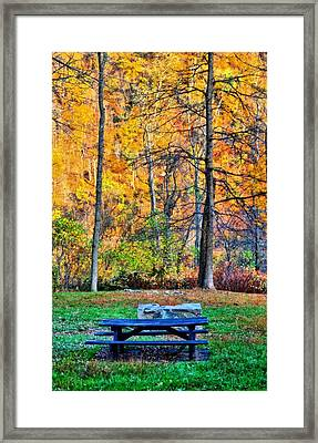 Picnic Table In Autumn Framed Print