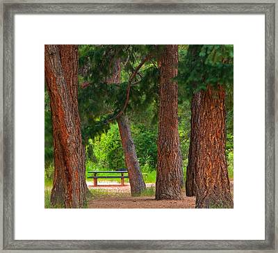 Framed Print featuring the photograph Picnic Time  by Eric Rundle