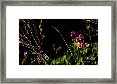Picture Art Framed Print by Tim Rice
