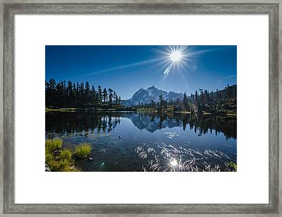 Picture Lake Mount Baker National Forest Framed Print