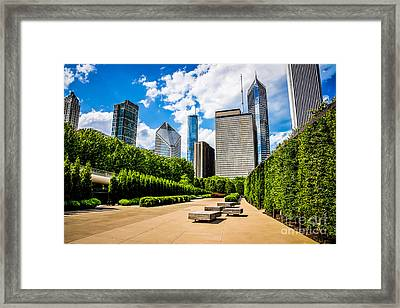 Picture Of Chicago Skyline With Millennium Park Trees Framed Print by Paul Velgos