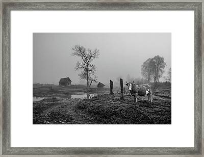 Pictures From The Village. Framed Print