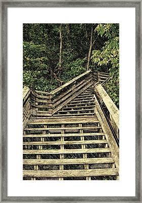Picturesque Climb Framed Print