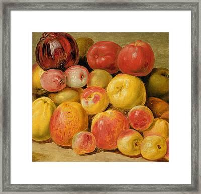 Pieces Of Fruit  Framed Print by Johann Heinrich Wilhelm Tischbein